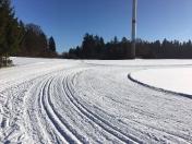 2017 Langlauf Waller